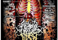 FREE EP – Abated Mass of Flesh: The Anatomy of Impurity